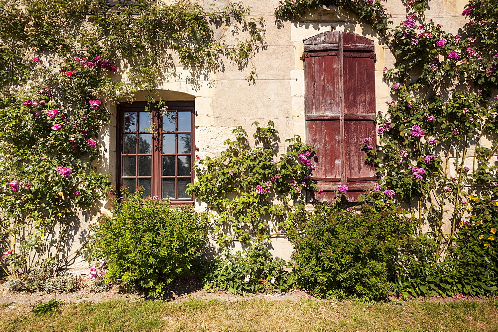 Sitting on the banks of the river Allier, this rose covered house is found in the beautiful village of Apremont-sur-Allier, Cher, Centre, France, Europe