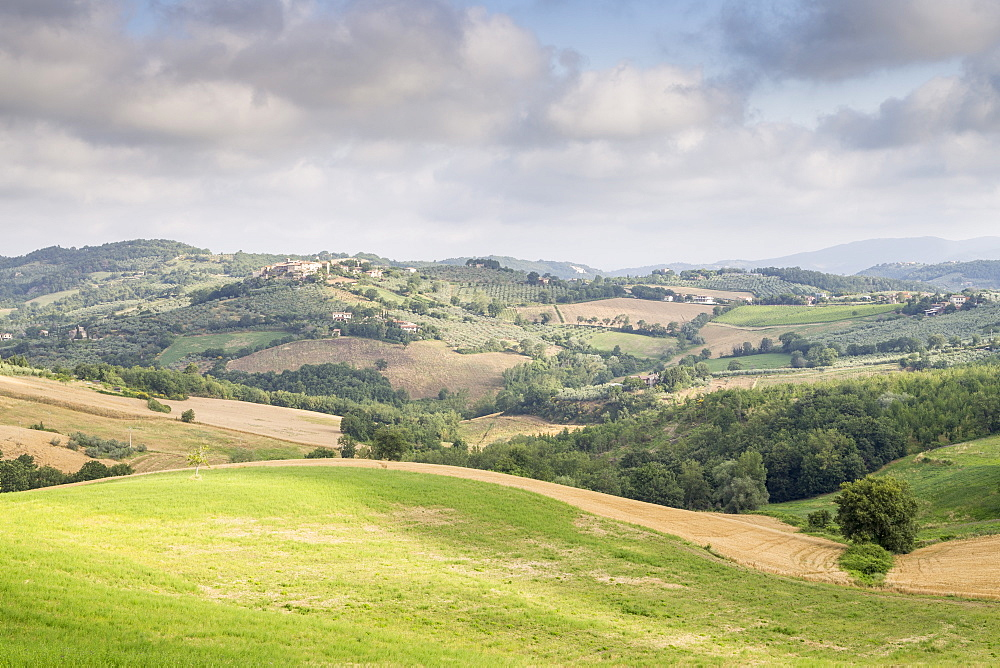 Rolling hills of the Val di Spoleto, Umbria, Italy, Europe