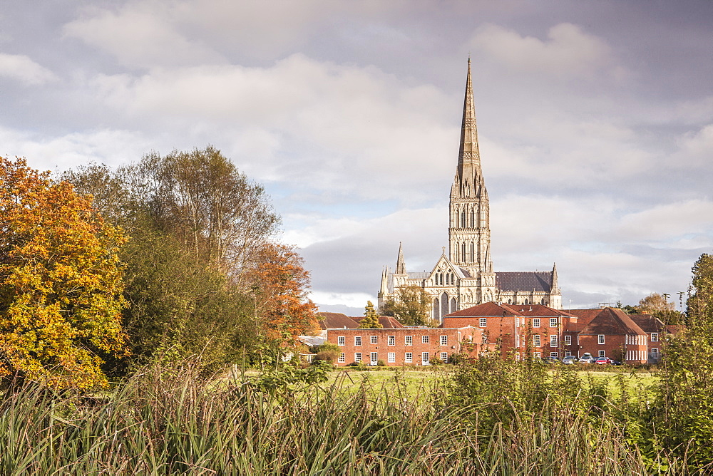 Salisbury Cathedral from the West Harnham Water Meadows, Salisbury, Wiltshire, England, United Kingdom, Europe