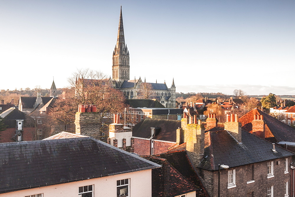 Salisbury cathedral across the rooftops of the city, Salisbury, Wiltshire, England, United Kingdom, Europe