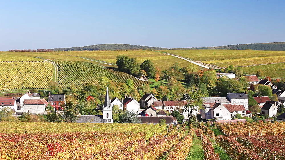 The vineyards of Sancerre, Cher, France - 849-1700