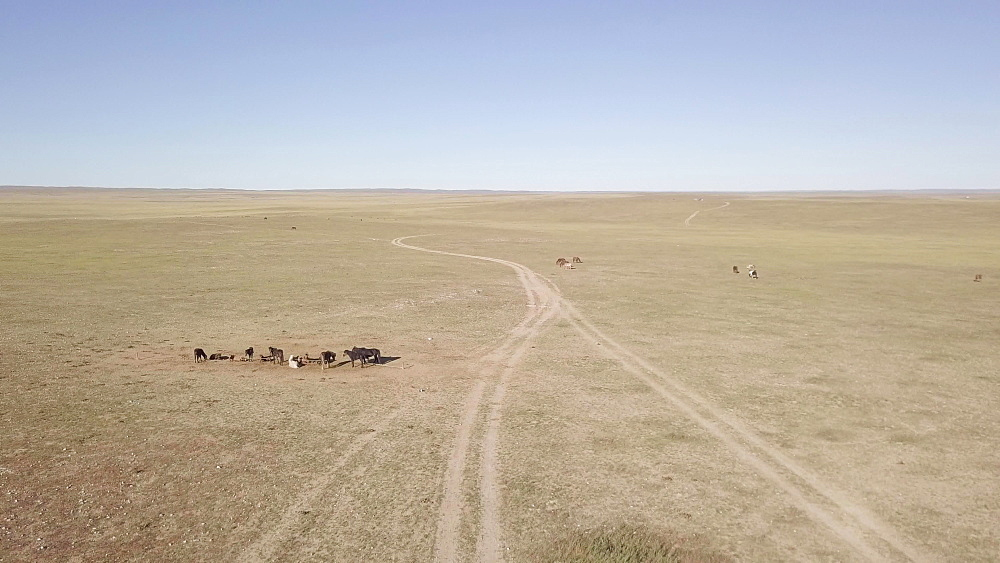 The wide open landscapes and Steppe of Mongolia, Central Asia, Asia
