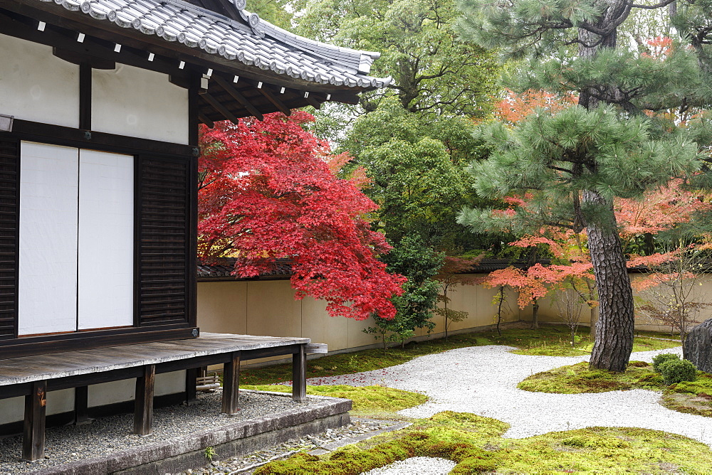 Autumn color in Rozanji Temple in Kyoto, Japan, Asia