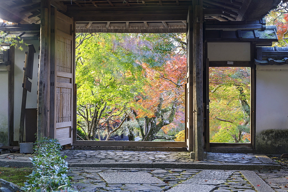 Autumn color in Anraku-ji temple in Kyoto, Japan, Asia