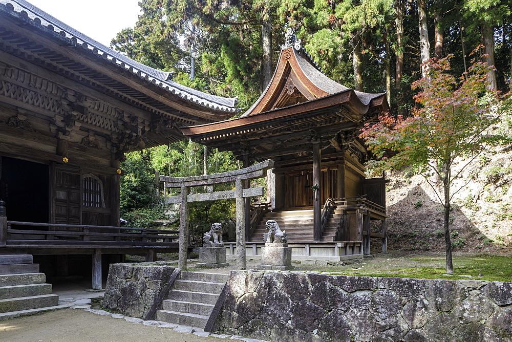 Shoshazan Engyo-ji temple on Mount Shosha, Himeji, Kansai, Japan, Asia
