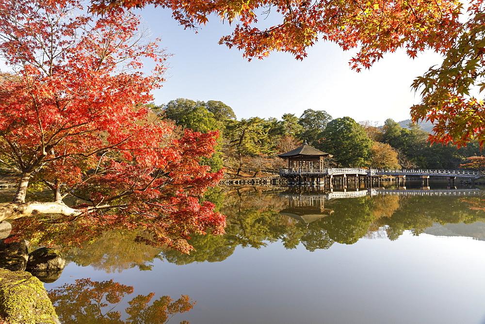 Autumn color around Ukimido pavilion on the Sagiike Pond, Nara Park, Nara, Japan.