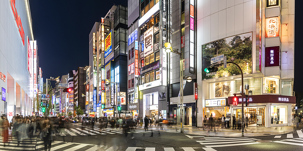 Panoramic of the Shinjuku area of Tokyo, Japan, Asia