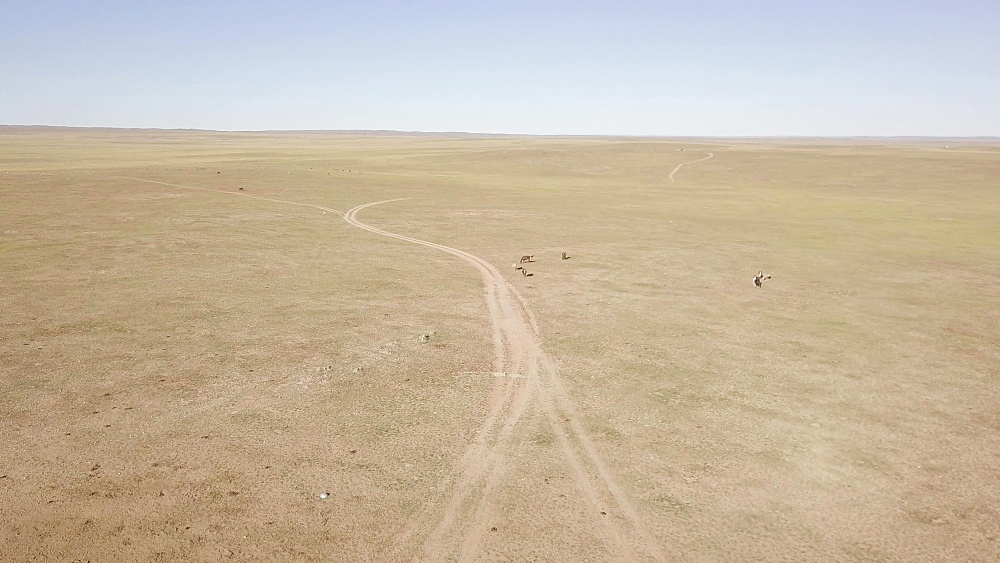 The wide open landscapes and Steppe, Mongolia, Central Asia, Asia