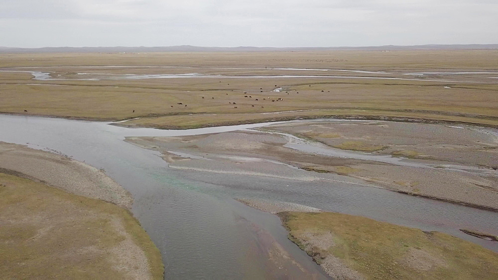 The Orkhon River in Mongolia, Central Asia, Asia