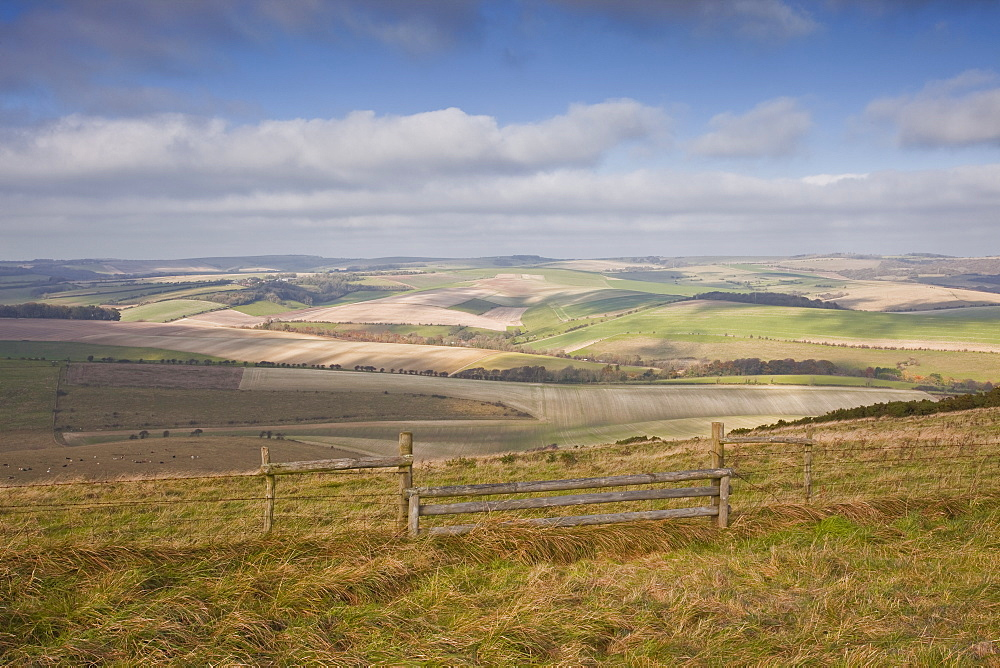 The rolling hills of the South Downs National Park near Brighton, Sussex, England, United Kingdom, Europe