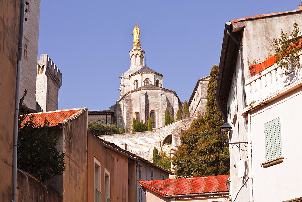 Notre-Dame des Doms d'Avignon cathedral from the small streets of the city, Avignon, Vaucluse, France, Europe