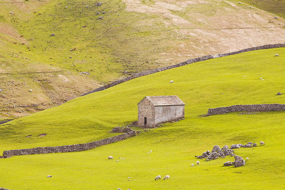 A stone barn near to Littondale in the Yorkshire Dales, Yorkshire, England, United Kingdom, Europe