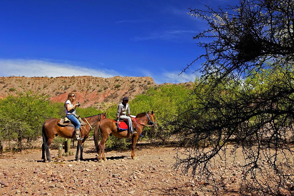 Horse riding, Canon Del Inca, Tupiza Chichas Range, Bolivia, South America
