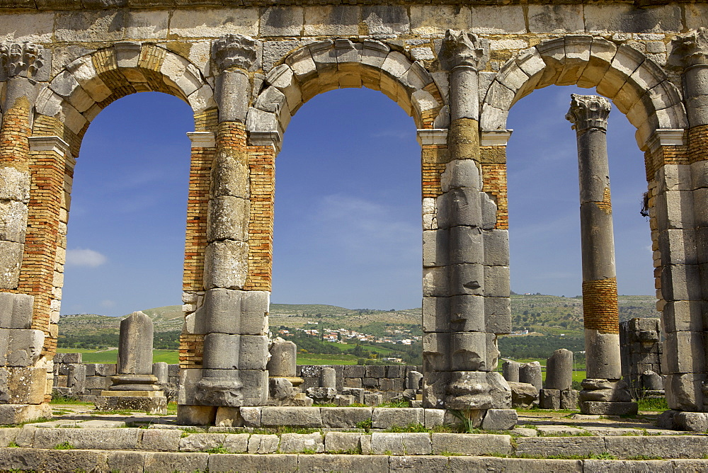 Roman archaeological site, Volubilis, UNESCO World Heritage Site, Meknes Region, Morocco, North Africa, Africa