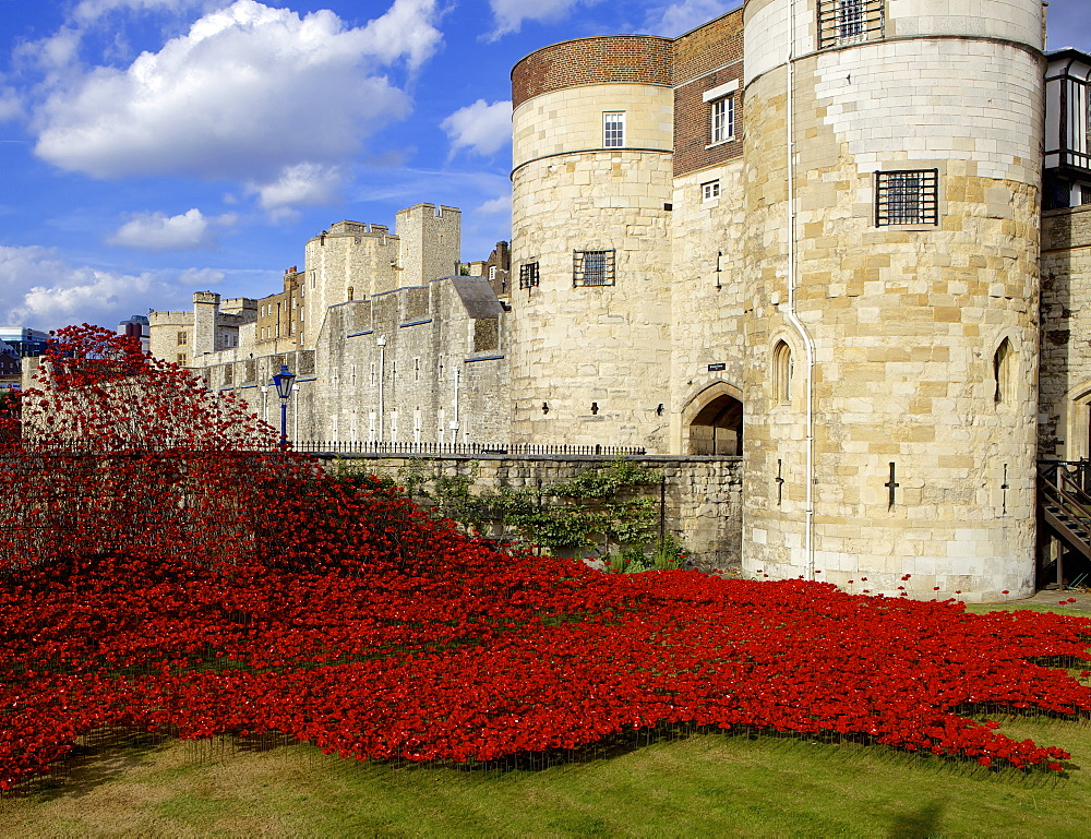 Blood Swept Lands and Seas of Red installation at The Tower of London marking 100 years since the First World War, Tower of London, UNESCO World Heritage Site, London, England, United Kingdom, Europe - 851-572