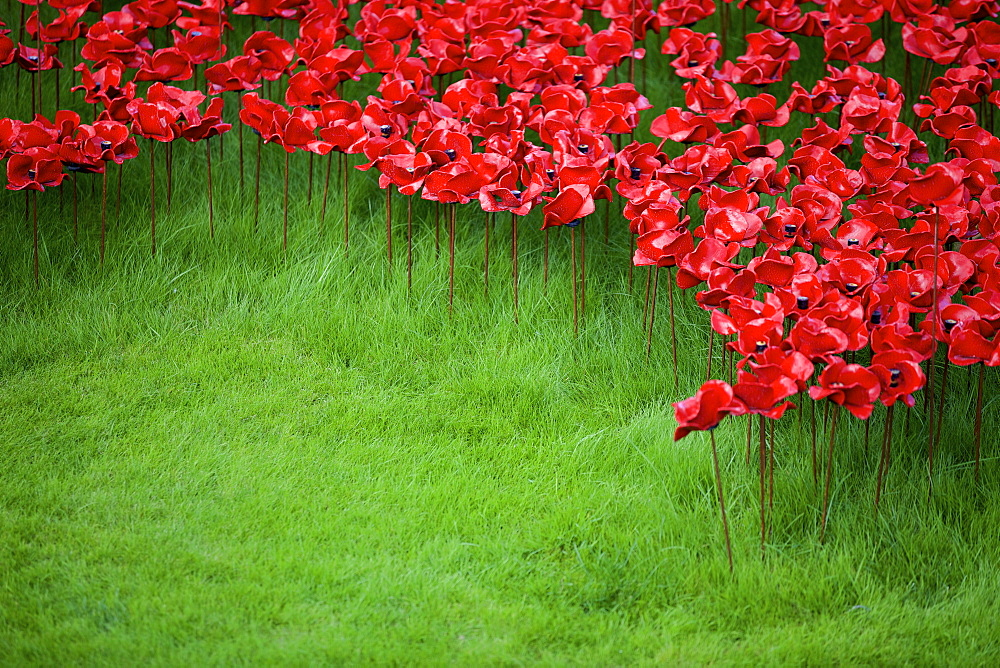 Blood Swept Lands and Seas of Red installation at The Tower of London marking 100 years since the First World War, London, England, United Kingdom, Europe