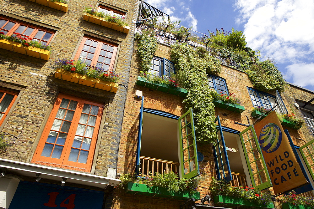 Neals Yard in Covent Garden, London, England, United Kingdom, Europe - 851-612
