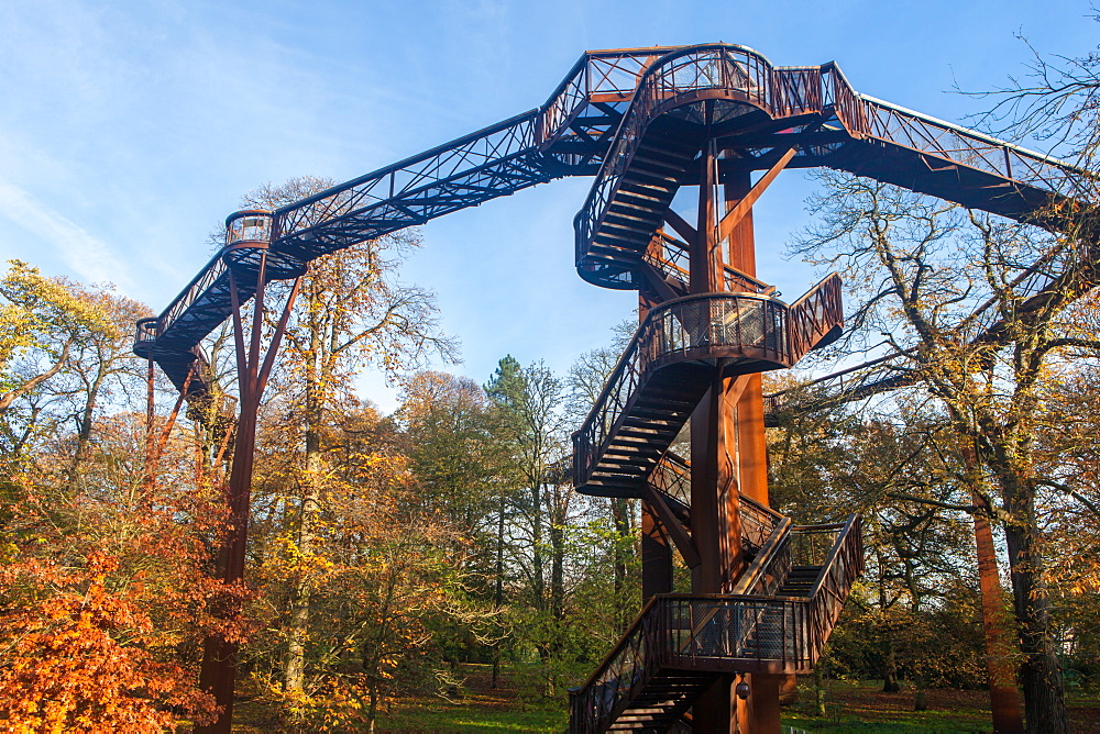 The Treetop Walkway in autumn at Kew Gardens, UNESCO World Heritage Site, Greater London, England, United Kingdom, Europe - 851-631
