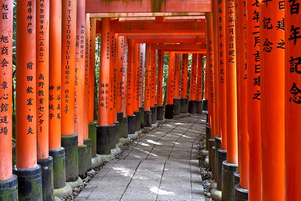 Red wooden Torii Gates at Fushimi Inari Shrine in Kyoto. - 851-739