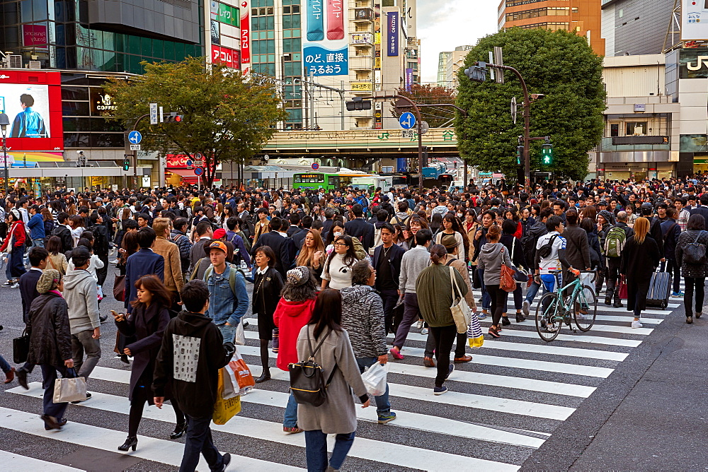 Crowds walking through the Shibuya Crossing, Tokyo, Japan, Asia - 851-847