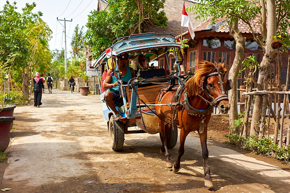 Horse carts (cidomos) used for transportation on the Gili Islands, Indonesia, Southeast Asia, Asia - 851-860