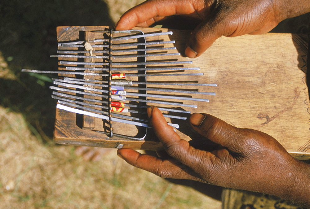 Republic of Congo (formerly Zaire) Ituri Forest. Pygmee and African music instrument, Kalimba thumb piano.