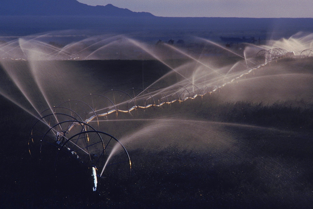 Parker area, Irrigation farming
