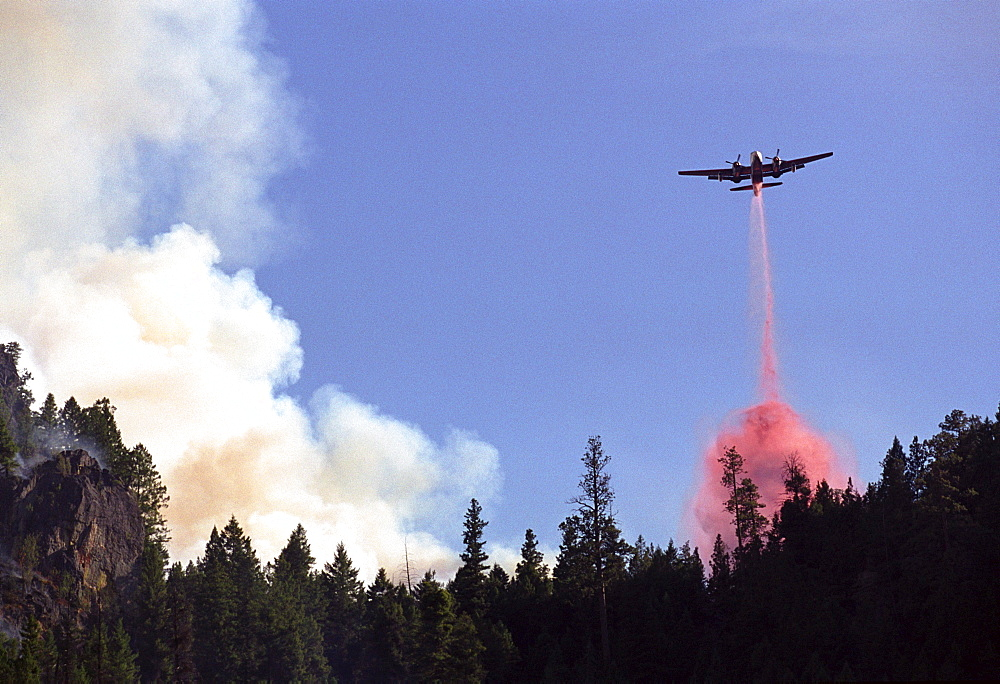 A plane drops a chemical fire retardant on the Bitterroot forest fire, as it burns out of control in the Bitterroot National Forest near Hamilton, Montana.