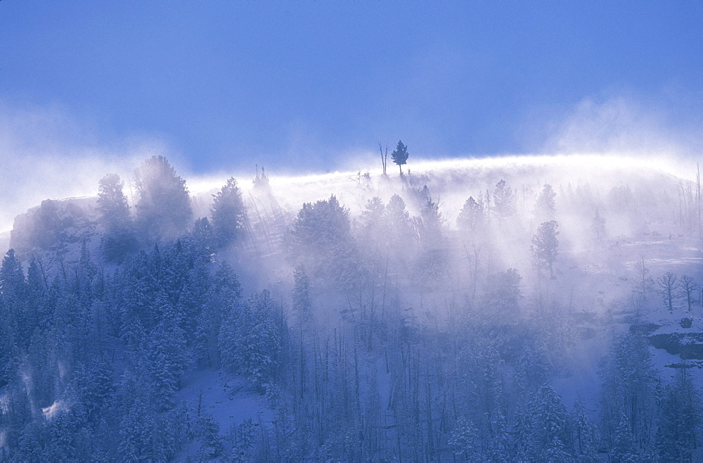 Severe winds blow snow from the mountain and hill tops of Yellowstone National Park.