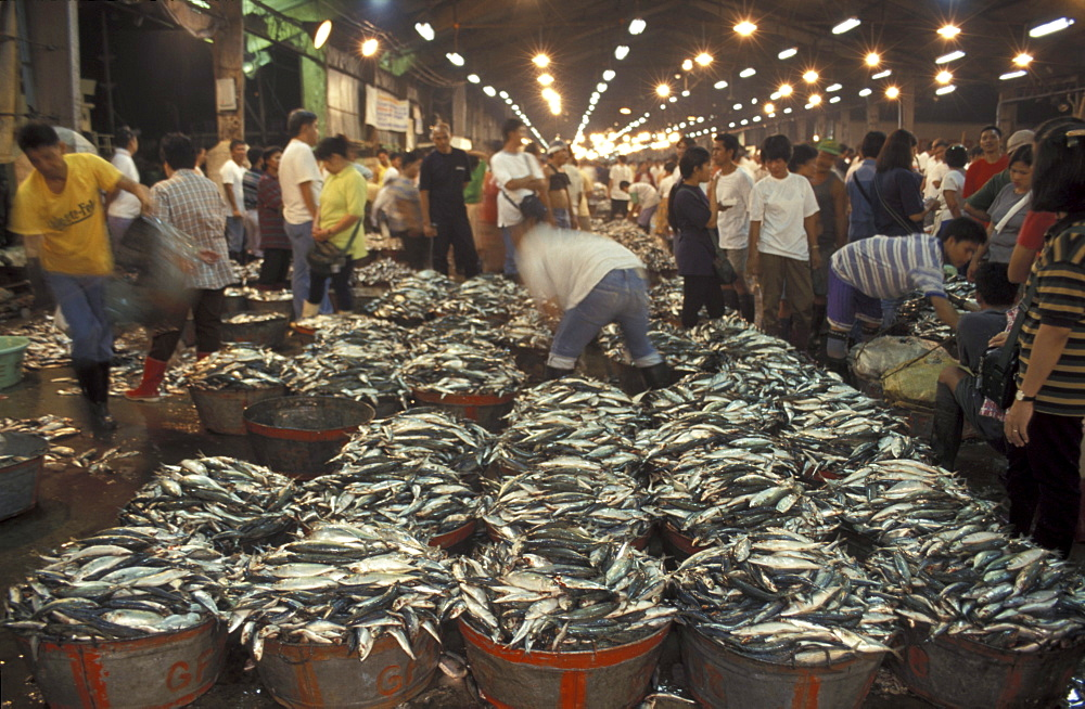 Navotas fishport in Manila Market activity starts at night to sunrise Philippines
