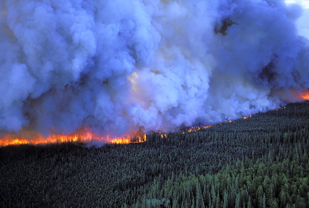 Forest fire north of Fairbanks, Alaska.