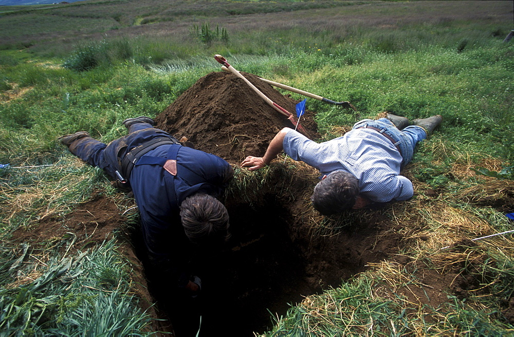 American archeologists, Antonio Gilman and John Steinberg, examine a test pit in a farmer's field near Glaumbaer in northcentral Iceland. Steinberg made an important discovery in Glaumbaer in 2001. He found the homestead of Thorfinn Karlsefni, the father of the first European born in the New World. This find has important implications for Viking history.