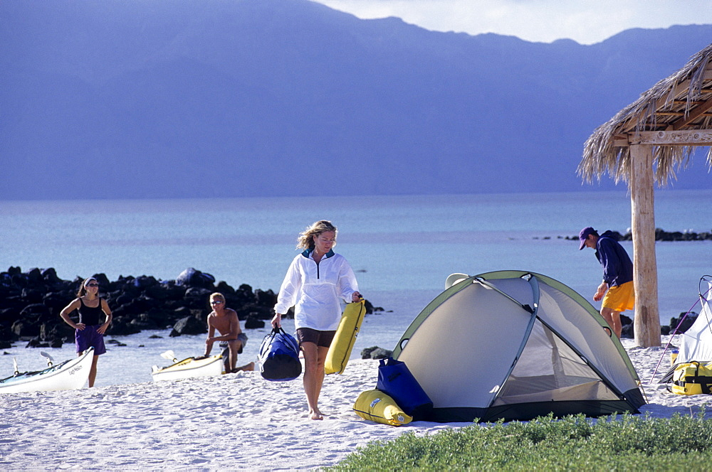 Sea Kayakers prepare camp after sea kayaking on the Sea of Cortez. Baja, Mexico