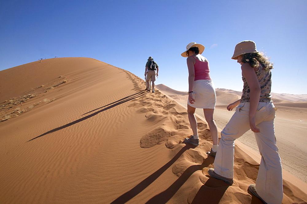 Namibia, Namib desert, Travelers hike up a 500ft dune ridge on a massive dune deep in the Namib desert near the access point of Sossusvlei.