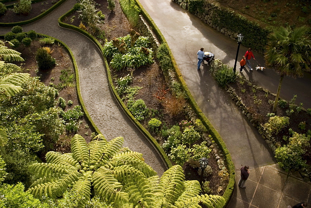 Visitors walk on the paths of Wellington Botanic Garden in New Zealand's capital city. The garden, entry to which is free, offers 25 hectares of unique landscape, protected native forest, conifers, specialised plant collections, colourful floral displays,
