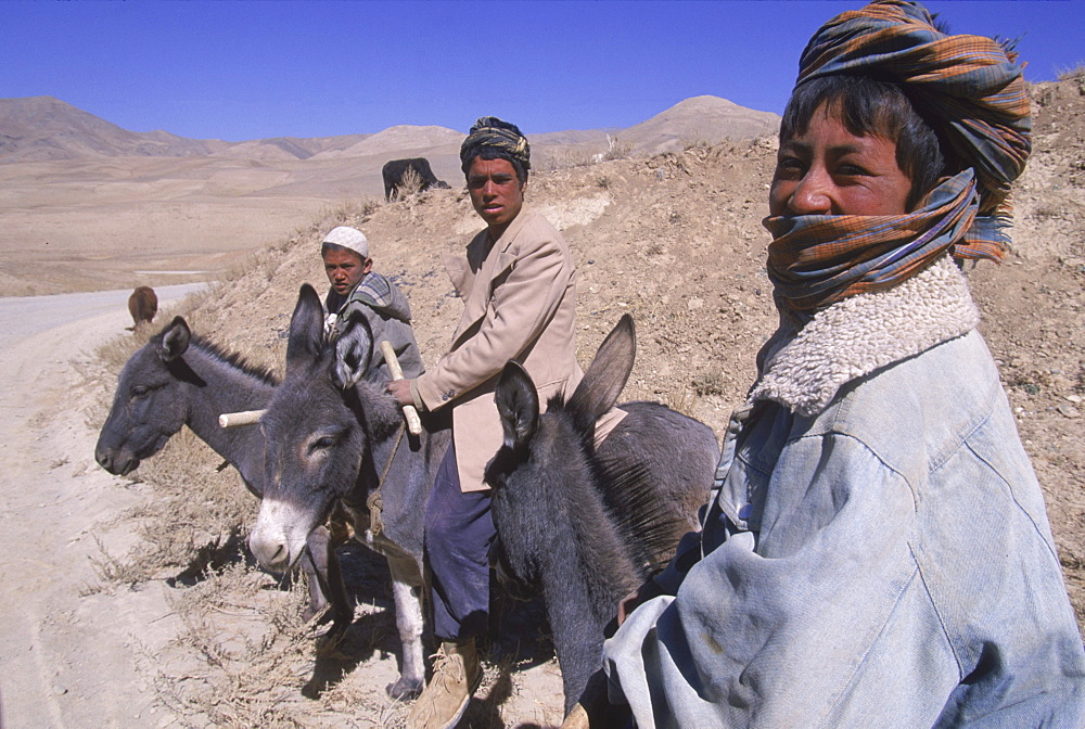 Young boys on donkeys watch over flocks of goats, sheep and donkeys near the top  of the Shebar Pass, which crosses into the Province of Bamiyan.  Due to a devastating drought in the region, dry wheat farming has failed for  three years from 1998-2002 and the forage is extremely sparse,   The pass is a strategic point leading into the Central Highlands, the Koh-i-Baba range and the Hazarajat, at the end of the Hindu Kush.  Most of the people of this region are of the Hazara tribe, and are Shi'a Moslems who have been persecuted for centuries by many of the Pashtun rulers of Afghanistan, who are from the Sunni sect.