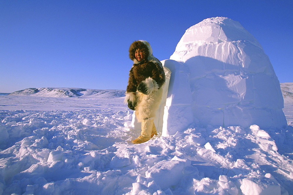A young Inuit boy climbs out of an igloo in Northwestern Greenland.   Many of the Inuit who live in this polar region still live a subsistence hunting lifestyle and practice ice age old traditions.   Winter temperatures hover between -20 and -50 Degrees Fahrenheit in this extreme environment.