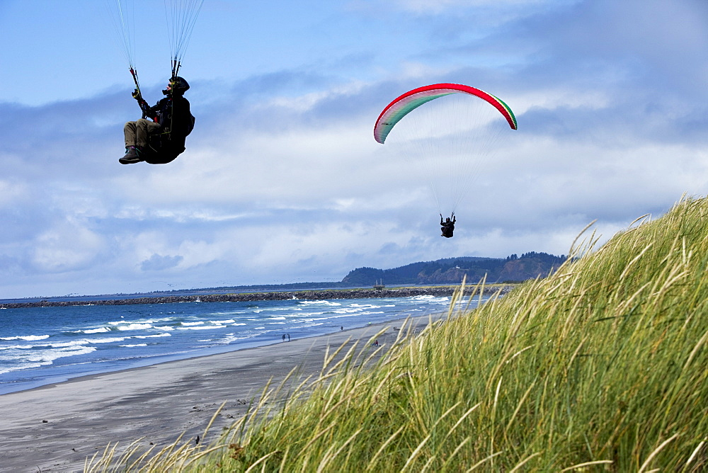 Two paragliders flying low over the beach and dunes on a sunny day.