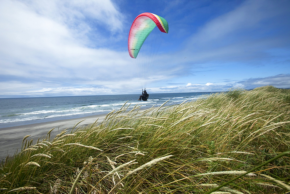 One female paraglider flying over grassy dunes and a beach on a sunny day.