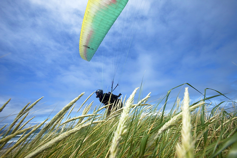 Low angle perspective of one male paraglider launching off of a grassy dune above the ocean.
