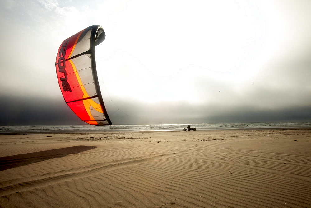 Silhouette of one male kite buggier (kite buggy) rolling down the beach in ominous clouds and unusual light.