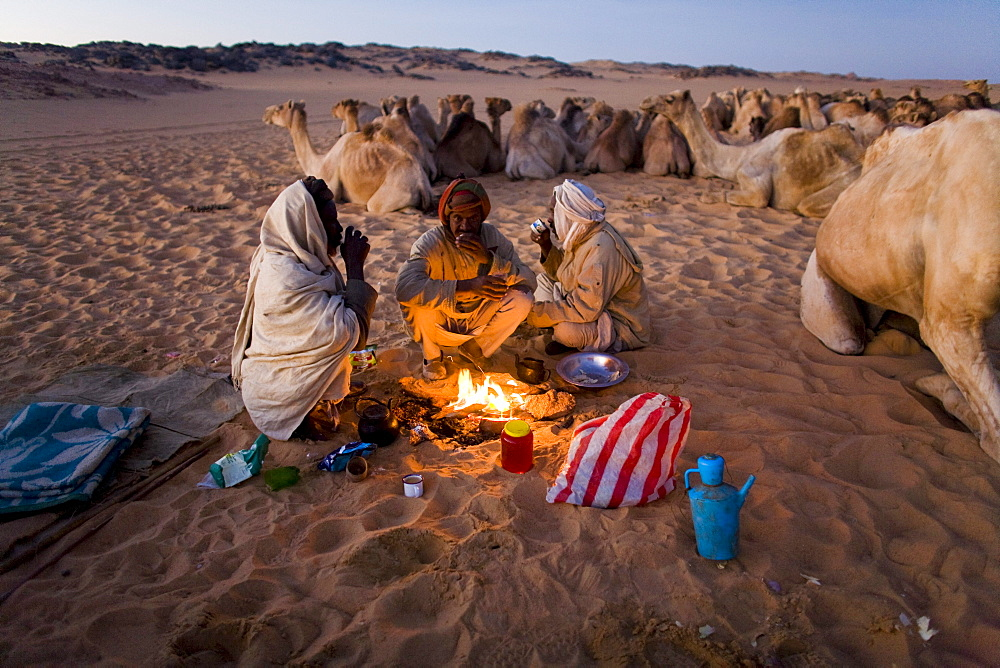 Camel herders gather for breakfast tea as they travel through the Sahara desert, Sudan on a camel caravan.