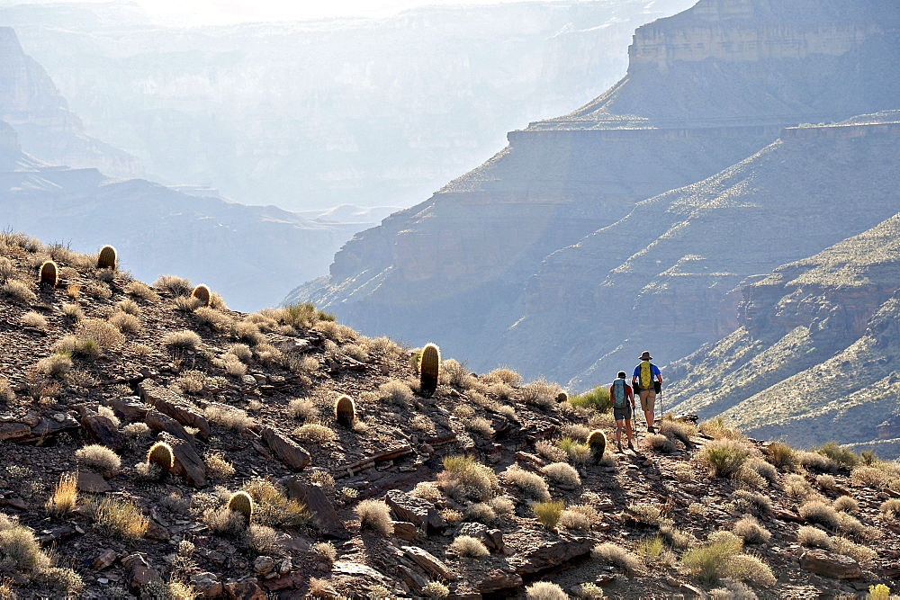 Hikers follow a route along the Colorado River that connect Tapeats Creek and Thunder River to Deer Creek in the Grand Canyon outside of Fredonia, Arizona November 2011.  The 21.4-mile loop starts at the Bill Hall trailhead on the North Rim and descends 2000-feet in 2.5-miles through Coconino Sandstone to the level Esplanada then descends further into the lower canyon through a break in the 400-foot-tall Redwall to access Surprise Valley.  Hikers connect Thunder River and Tapeats Creek to a route along the Colorado River and climb out Deer Creek.