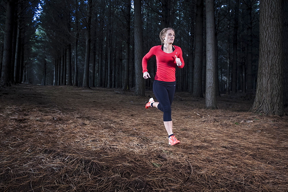 Female athlete running on a trail through a pine plantation in North West Tasmania.