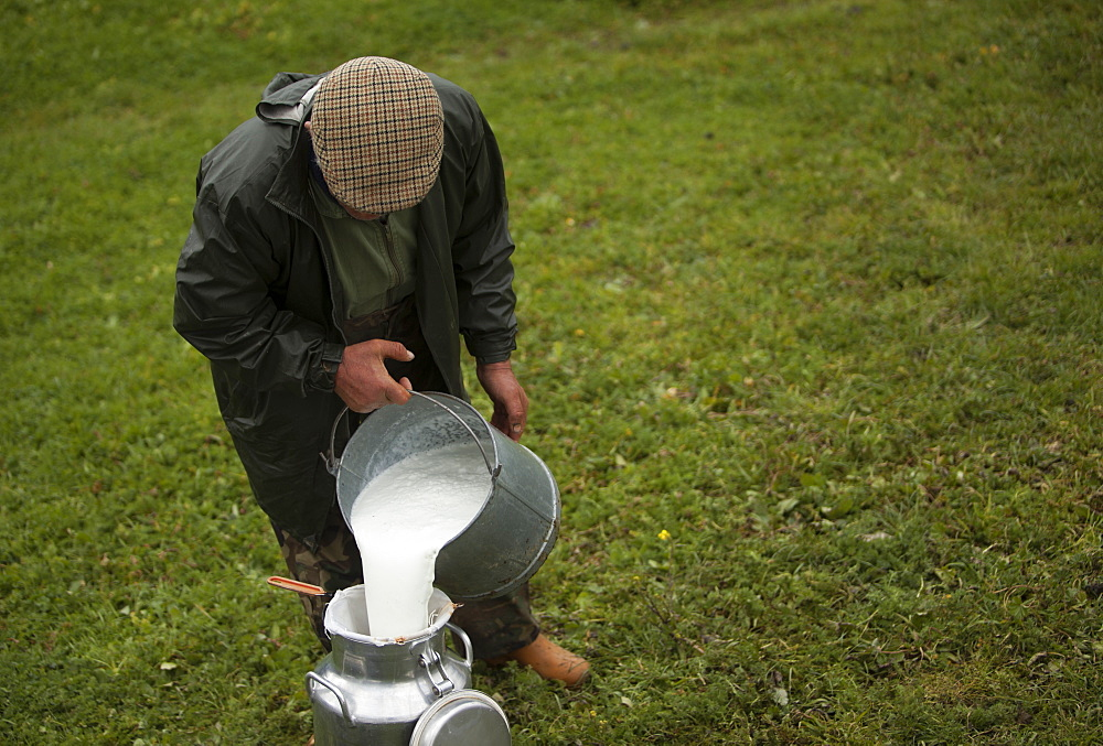 A shepherd collects milk in Villaluenga del Rosario, in the Sierra de Grazalema National Park, Cadiz province, Andalusia, Spain