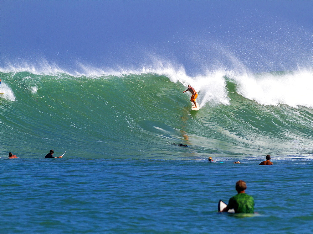Surfing a wave, Bali, Indonesia.