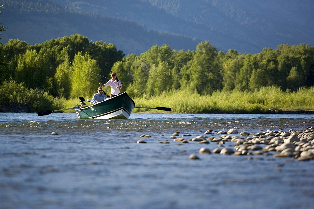 A couple and their dog fly fish the Snake River from a drift boat near Jackson, Wyoming. USA, United States of America