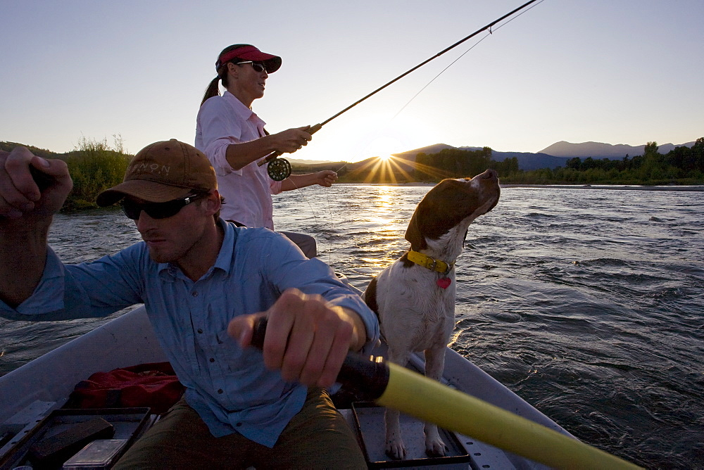 A couple and their dogs fly fish the Snake River at sunset from a drift boat near Jackson, Wyoming. USA, United States of America