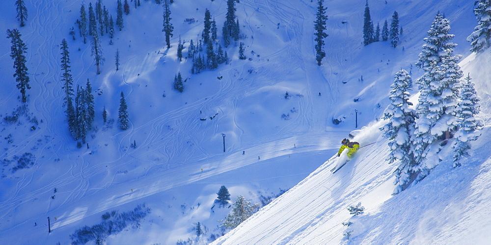 Male skier enjoying the fresh powder snow. Photo by Thomas Kranzle, United States of America