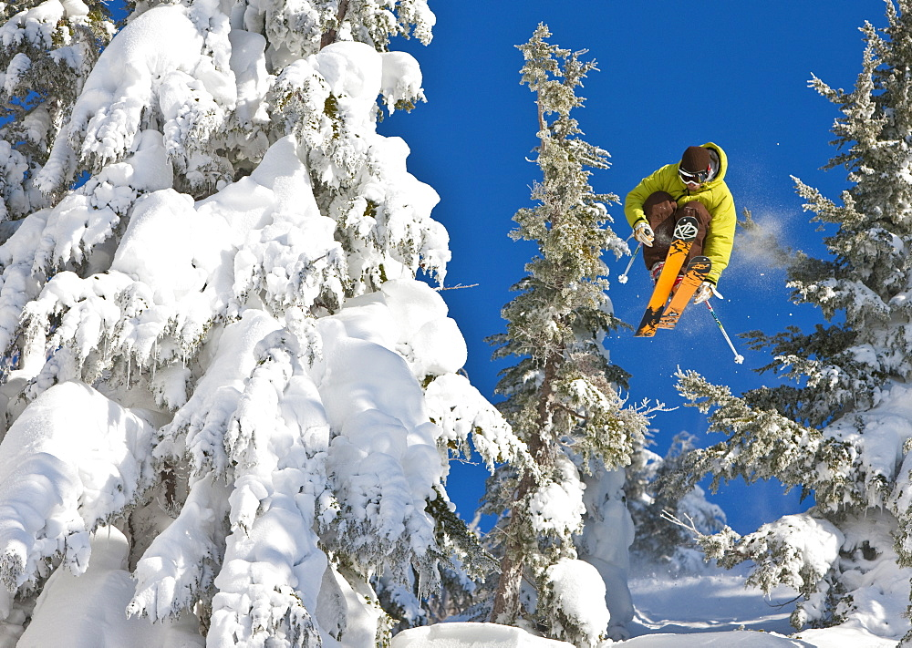 Chrlie Cannon goes into suspended animation through the trees at Mt Hood Meadows, Oregon, United States of America